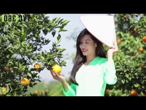 TVC Quảng cáo Phân bón Thiên Nông 2