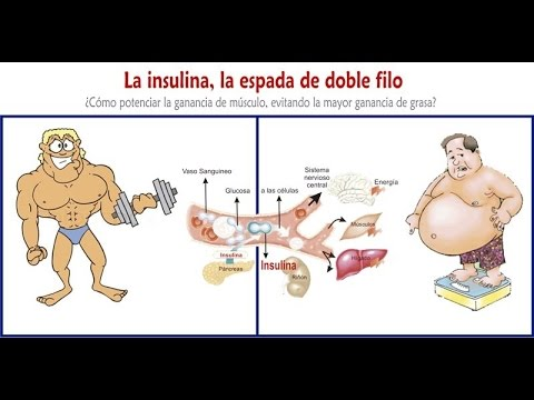 Diabetes mellitus tipo 2 Endocrinologia