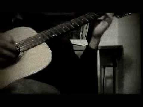12 string flatpicking solo