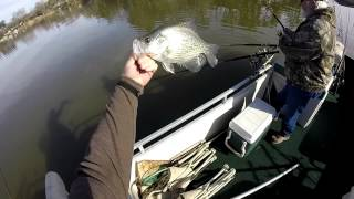 Awesome Crappie Fishing!! Lot's of 2 LB Crappie...