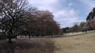 2015-04-09 In the park, Tokyo