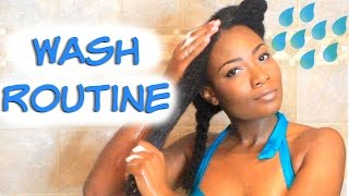 Back to Basics Pt. 1 | Wash and Condition Routine