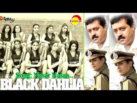 Black Dhaliya