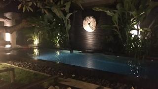Стрим с ночного Бали