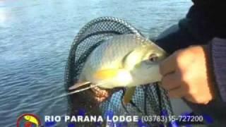 preview picture of video 'Pesca de Bogas en Paso de la Patria, Corrientes'