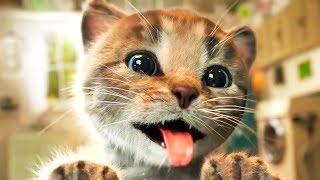 ПРИКЛЮЧЕНИЕ МАЛЕНЬКОГО КОТЕНКА / СПАСЕНИЕ КОТЕНОЧКА в мультике про кота #ПУРУМЧАТА