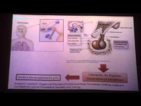 Soluciones hipertónicas en farmacia