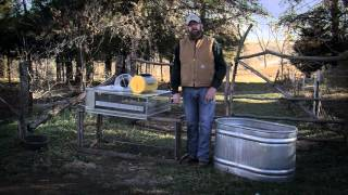 Backyard Chickens 101 — MOTHER EARTH NEWS