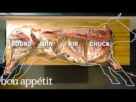 Where Every Cut of Beef Comes From