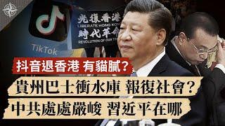 貴州巴士衝入水庫,報復社會?抖音退出香港,另有貓膩?中共處處嚴峻,習近平在哪裡?(2020.7.8)|世界的十字路口 唐浩