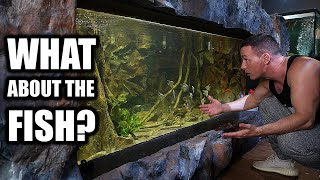 What will happen to the fish and aquariums?