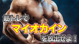 【スーパー健康パワー】マイオカインで中高年もガッチリ健康に!筋肉博士の山本義徳さん第3弾!