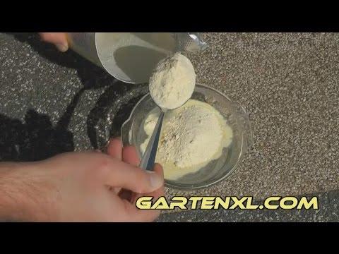 Der Kohl der geschmorte Kaloriengehalt auf 100 Gramm des Eichhornes die Fette