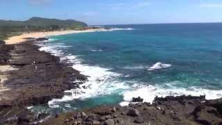 #153 США Гавайи На машине вокруг острова