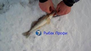 Рыбалка на зимние воблеры