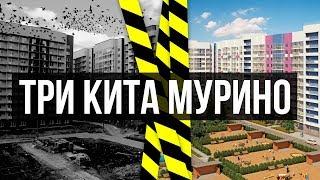 Яндекс карты спб мурино