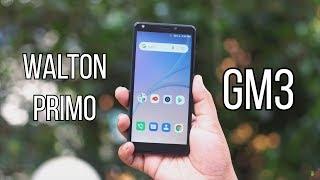 Walton Primo GM3 Review