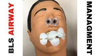 BLS Airway Management (Opening the Airway)