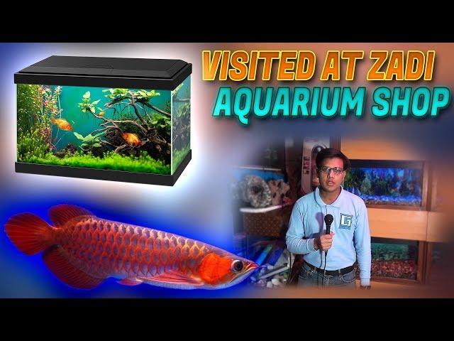 Visited At Zadi Aquarium Shop  Banjar Arowana Catfish's tattoo parrot fish for sale In Urdu/Hindi