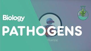 Infectious Diseases - Pathogen