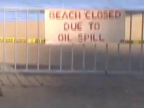 Hippies Using Human Hair to Soak Up Oil Spills