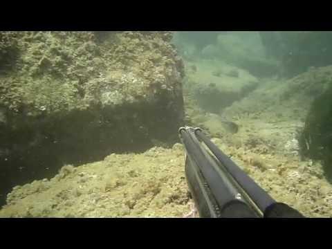La pesca russa su quello che lo storione è preso