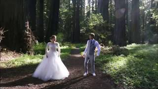 Indian style wedding dance in Redwood forest, California (London Thumakda song)