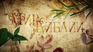 Мир Библии 1. Библейские растения