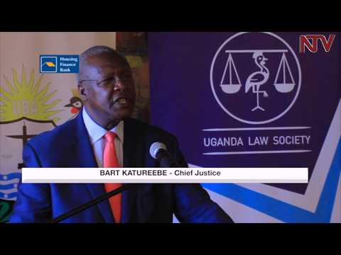 Slow litigation affecting bank profits - UBA
