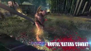 VideoImage1 Shadow Warrior