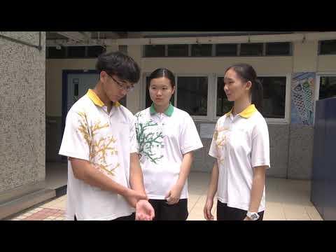 樂道中學 | 短片製作:走向光明的道路