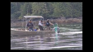 Fish Friday...This Could Be You! - Episode 2
