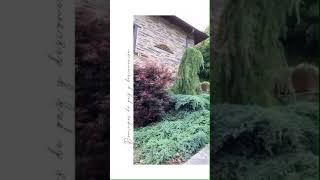 Video del alojamiento O Paxar