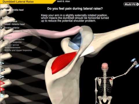 Elastyczność ćwiczeń mięśni ludzkich