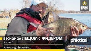 Куда поехать на рыбалку за лещом свердловской области
