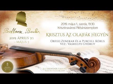 Beethoven Budán 2019 - Krisztus az olajfák hegyén - video preview image