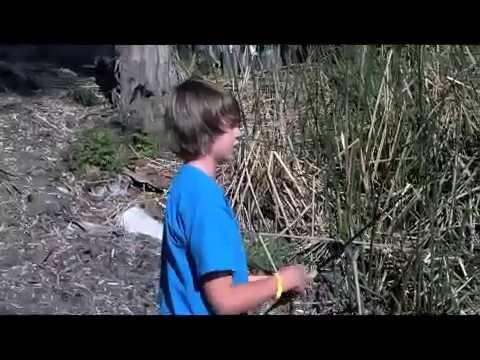 Summertime Pond Fishing