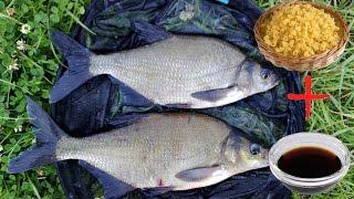 Рыбалка нашто ловить леща наживка