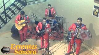No Me Pidas Perdon (EN VIVO) (2015) - Errantes de Sonora