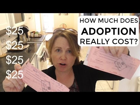 Breakdown of Costs Involved in Foster Care Adoption