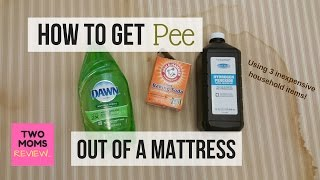 How To Get Pee Out Of A Mattress In 5 Easy Steps!!! Over A MILLION Views!!
