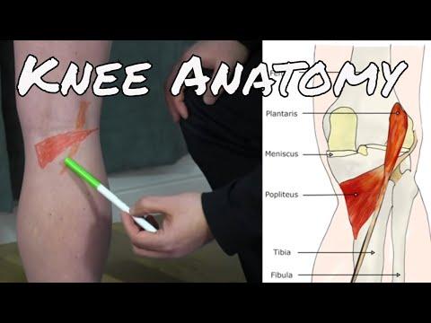 Instrucțiuni Voltaren pentru dureri articulare