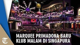 Berkonsep Karnaval, Marquee Jadi Klub Malam Terbesar di Singapura, Intip Kemegahannya!