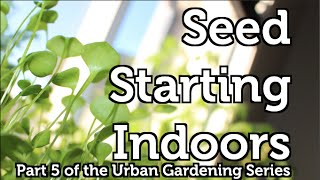 Starting and Growing your own Seedlings indoors