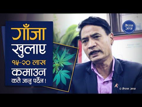 गाँजा वैधानिक हुनुपर्छ भनेर वकालत गरिरहेका पुर्व मन्त्री शेर बहादुर तामाङ   Interview   Nepal Aaja
