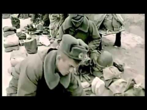 Красная Плесень Афганистан
