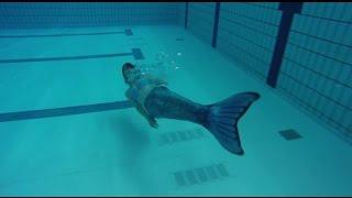 تحميل اغاني «عروس البحر» تظهر في حمام سباحة بهولندا MP3