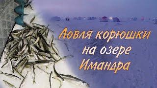 Озера для рыбалки в мурманской области
