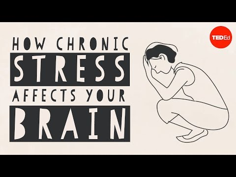Screenshot of video: How chronic stress can affect the brain
