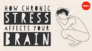 How Chronic Stress Affects Your Brain